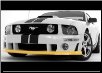 ROUSH 2005 - 2009 Ford Mustang Front Fascia Chin Spoiler, Unpainted (SKU: 401269)