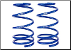 ROUSH 2005 - 2012 Ford Mustang Front Coil Springs (SKU: 401294)