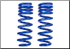 ROUSH 2004 - 2008 Ford F-150 4x2 Front Coil Spring Set (Pair) (SKU: R06020019)